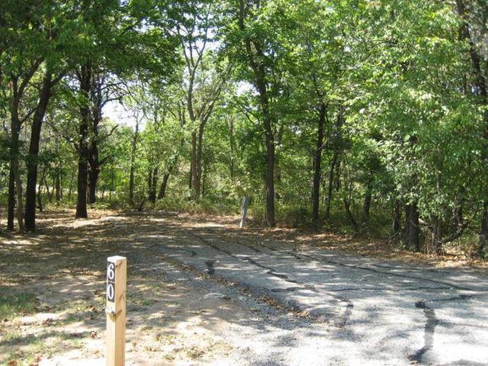 Osage Cove Campsite #60