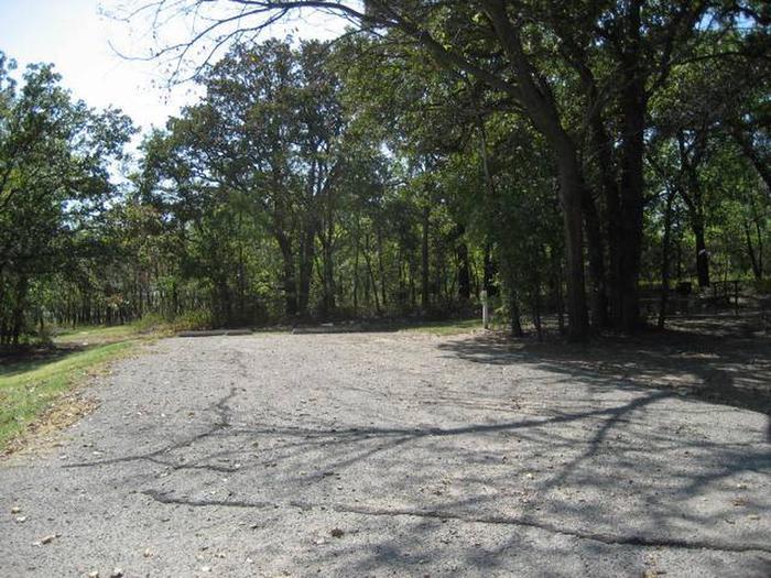 Osage Cove Campsite #81
