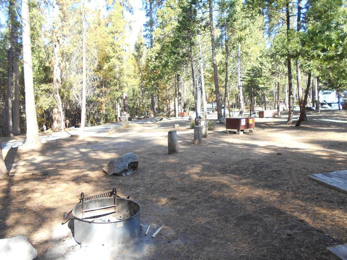 Hodgdon Meadow CampgroundSite 004