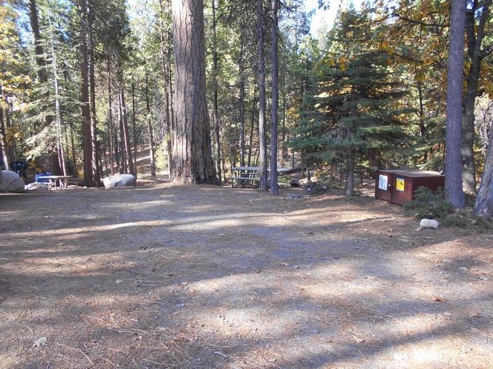 Hodgdon Meadow CampgroundSite 005