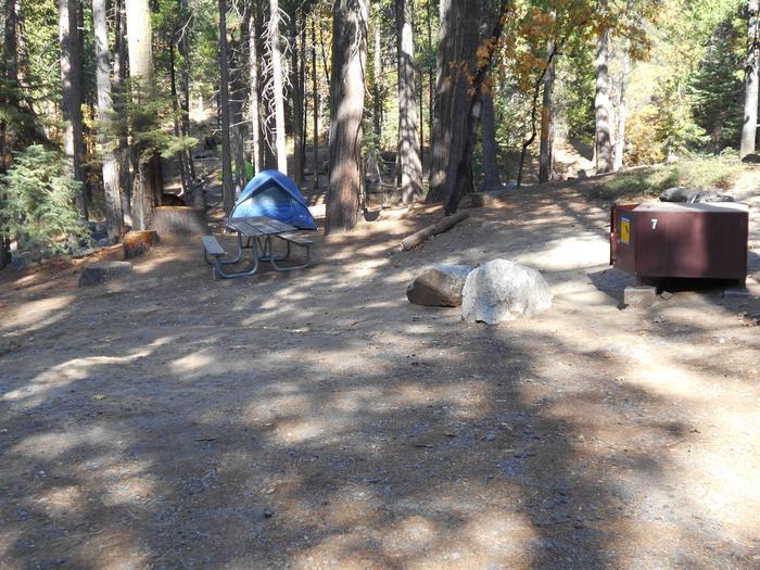 Hodgdon Meadow CampgroundSite 007
