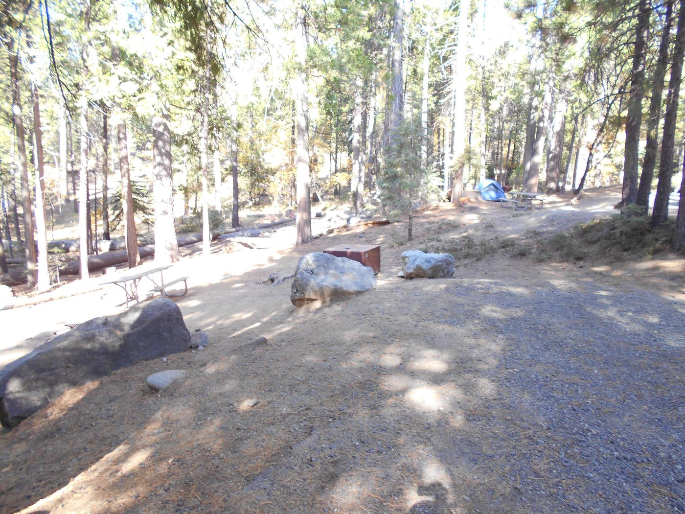 Hodgdon Meadow CampgroundSite 008