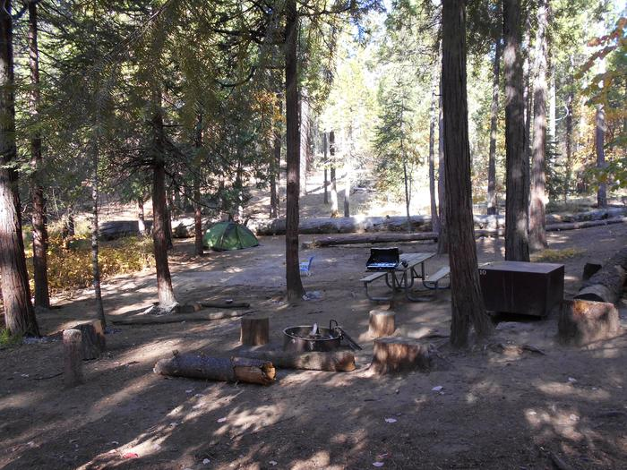 Hodgdon Meadow CampgroundSite DBL 10