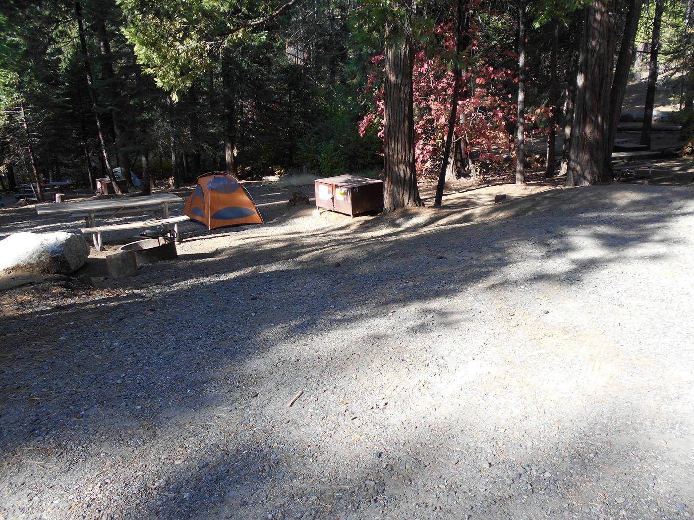Hodgdon Meadow CampgroundSite 011