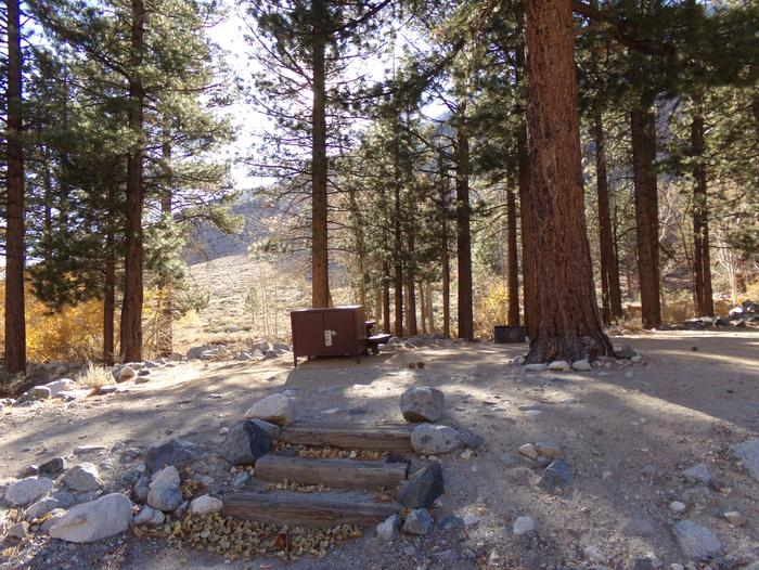 Upper Sage Flat Campground wooded site #02 featuring picnic table, food storage, and fire pit.