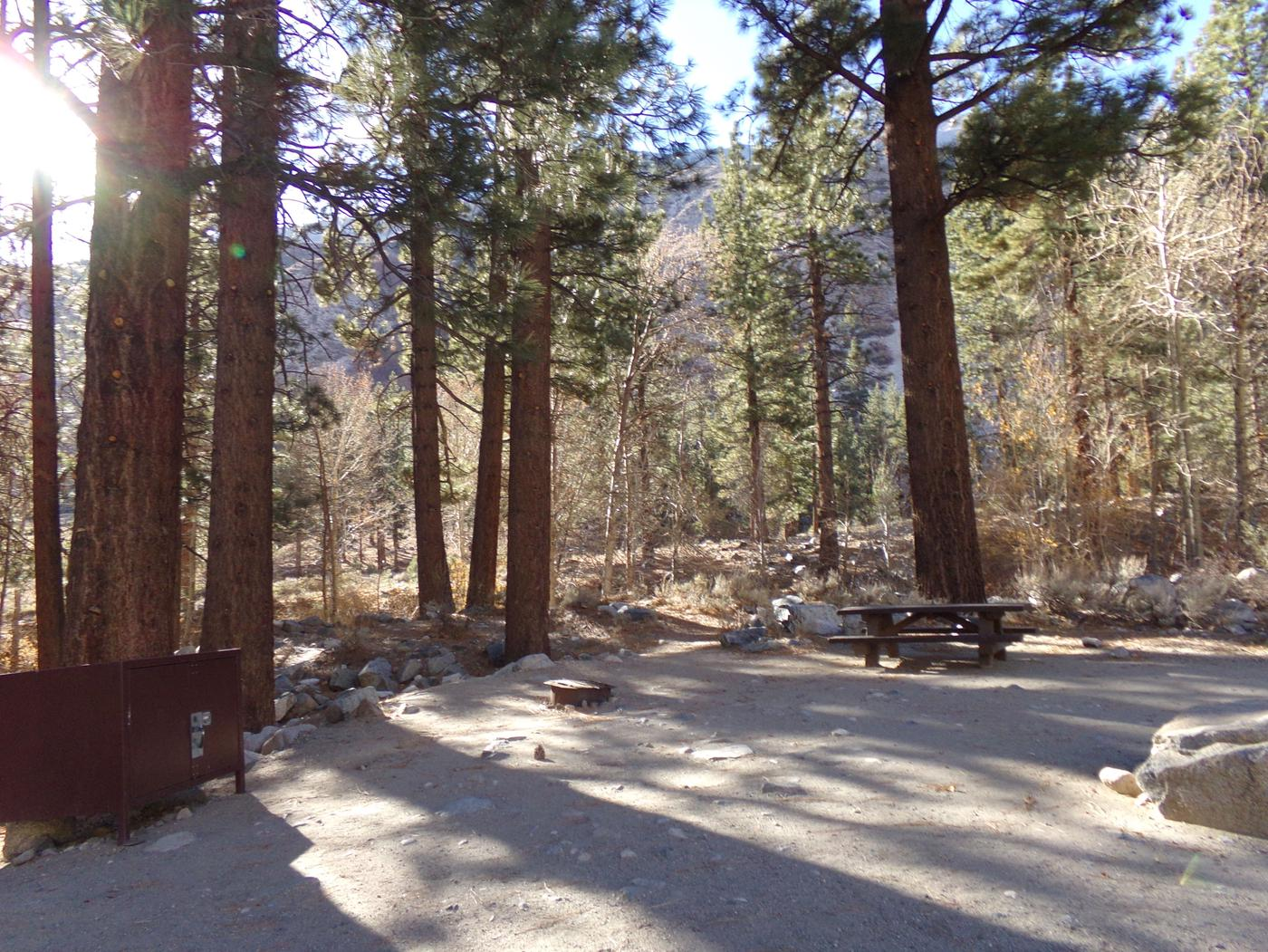 Upper Sage Flat Campground wooded site #04 featuring picnic table, food storage, and fire pit.