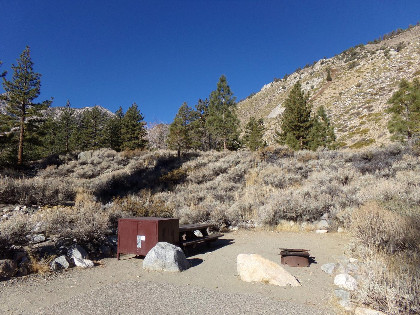 Upper Sage Flat Campground site #05 featuring picnic table, food storage, and fire pit with mountain views.