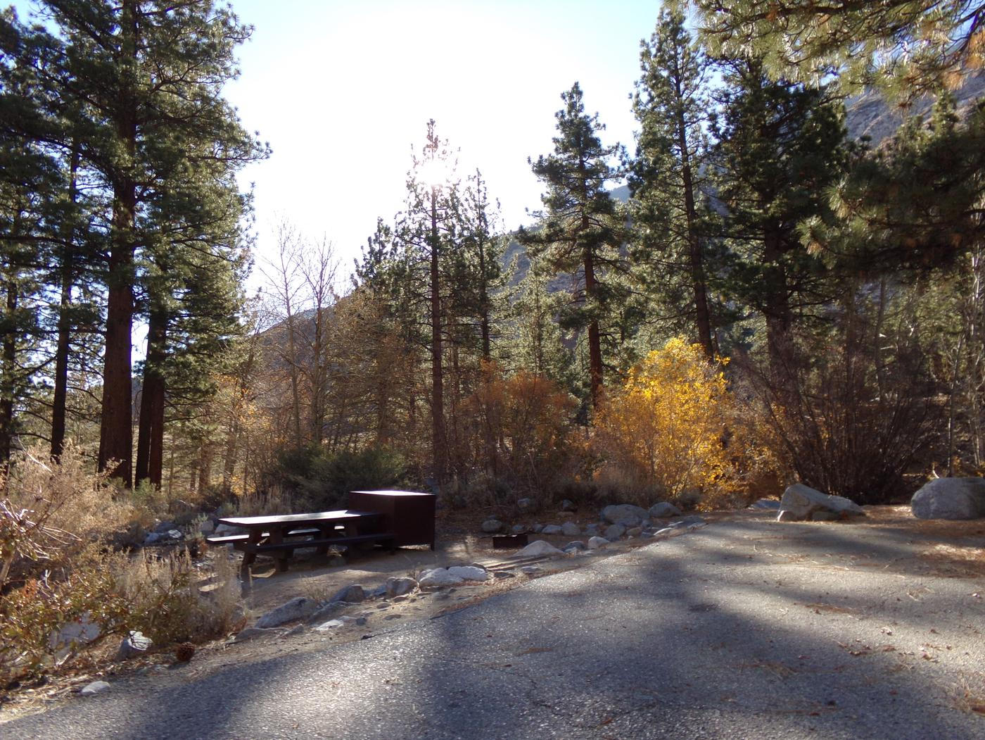 Upper Sage Flat Campground site #06 featuring picnic table, food storage, and fire pit with mountain views.