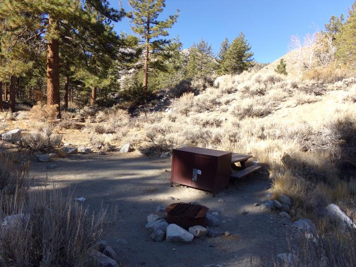 Upper Sage Flat Campground site #07 featuring picnic table, food storage, and fire pit.