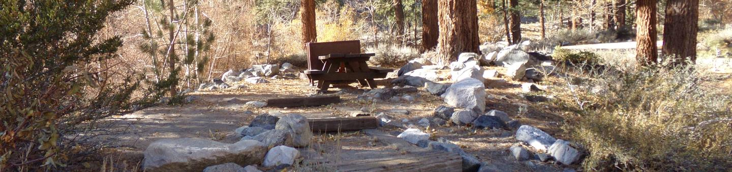 Upper Sage Flat Campground site #08 featuring picnic table, food storage, and fire pit among the trees.