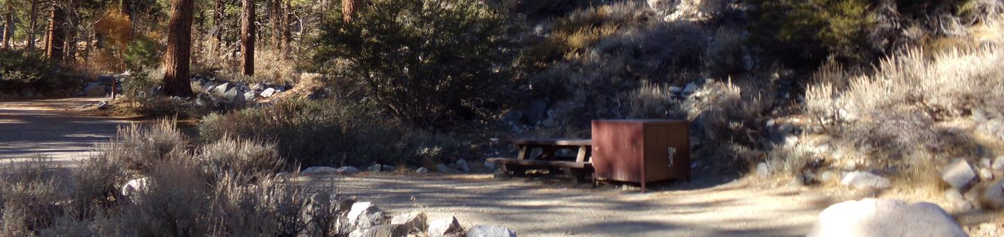 Upper Sage Flat Campground site #09 featuring picnic table, food storage, and fire pit.