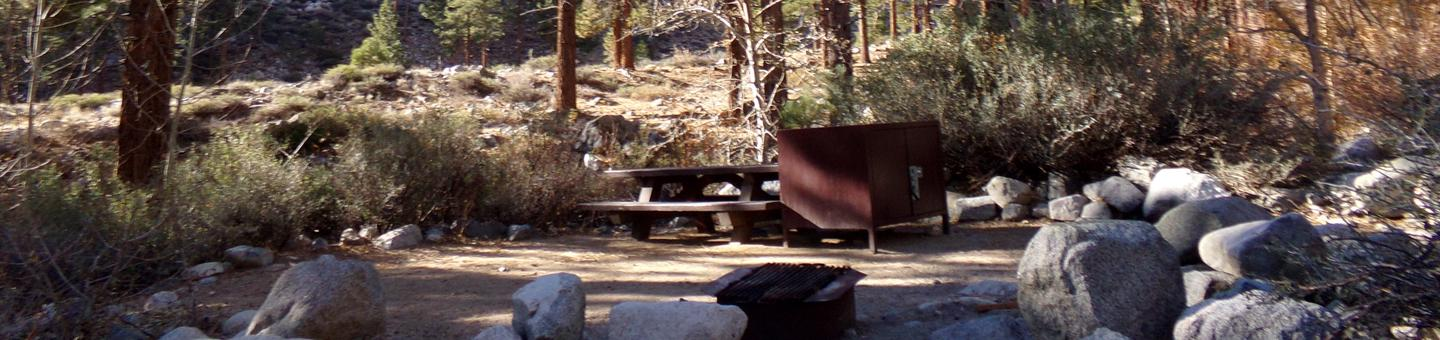 Upper Sage Flat Campground site #10 featuring picnic table, food storage, and fire pit.