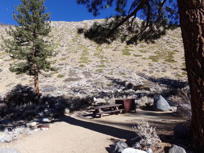 Mountain side campsite #12 at Upper Sage Flat Campground featuring picnic table, food storage, and fire pit.