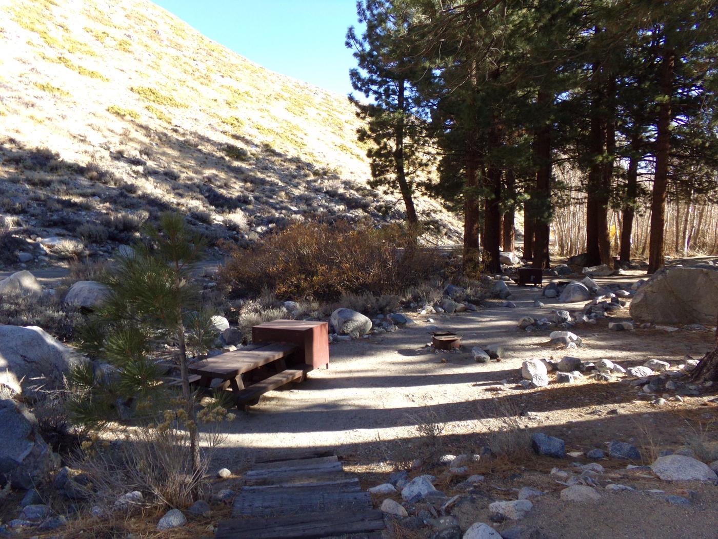 Upper Sage Flat Campground site #14 featuring picnic table, food storage, and fire pit.