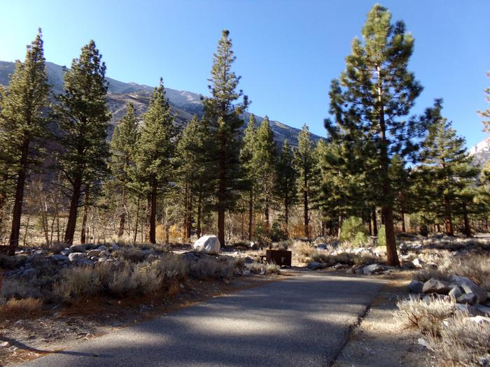 Parking space and entrance to site #15, Upper Sage Flat Campground.