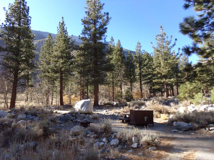 Upper Sage Flat Campground site #15 featuring picnic table, food storage, and fire pit.