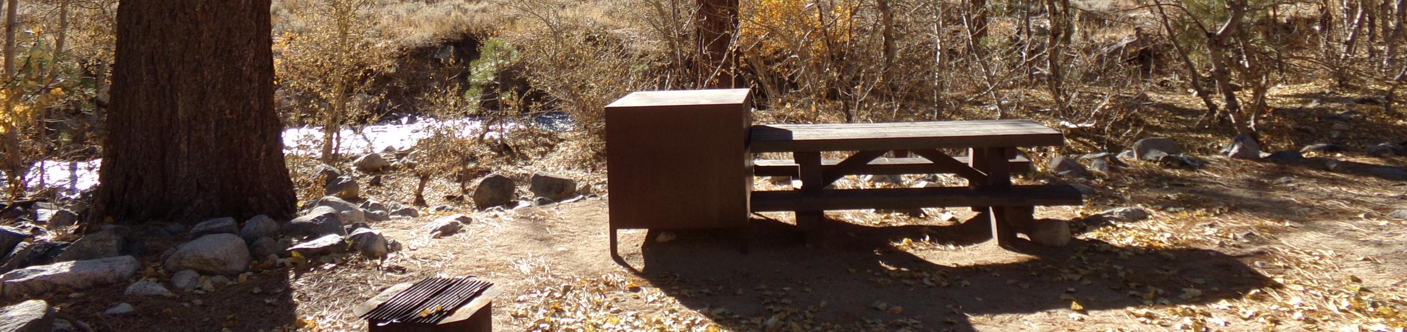 Upper Sage Flat Campground creekside site #17 featuring picnic table, food storage, and fire pit.