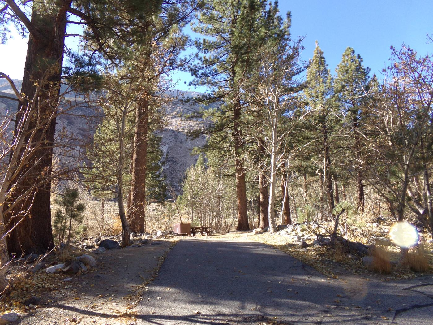 Parking space and entrance to site #17, Upper Sage Flat Campground.