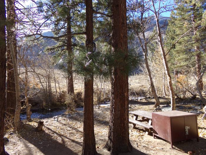 Upper Sage Flat Campground creekside site #18 featuring picnic table, camping space, and food storage.
