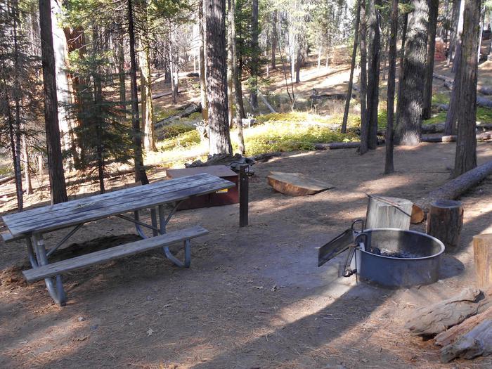 Hodgdon Meadow CampgroundSite 019