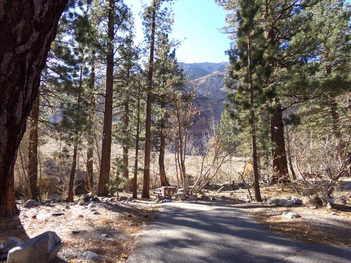Parking space and entrance to site #18, Upper Sage Flat Campground.