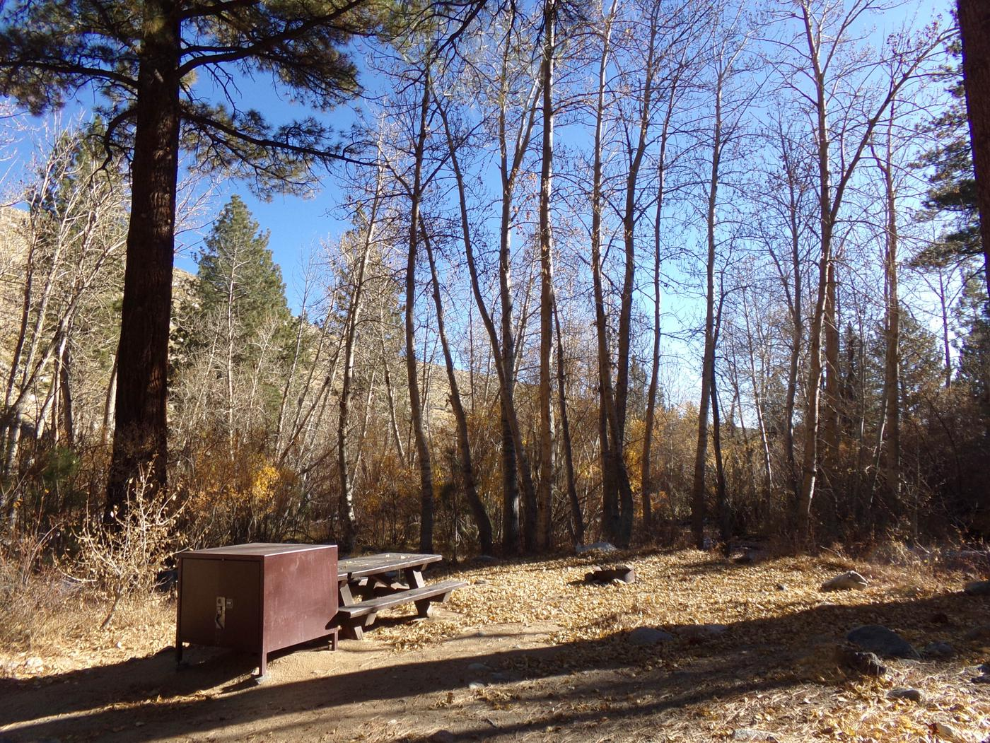 Upper Sage Flat Campground site #19 featuring picnic table, food storage, and fire pit.