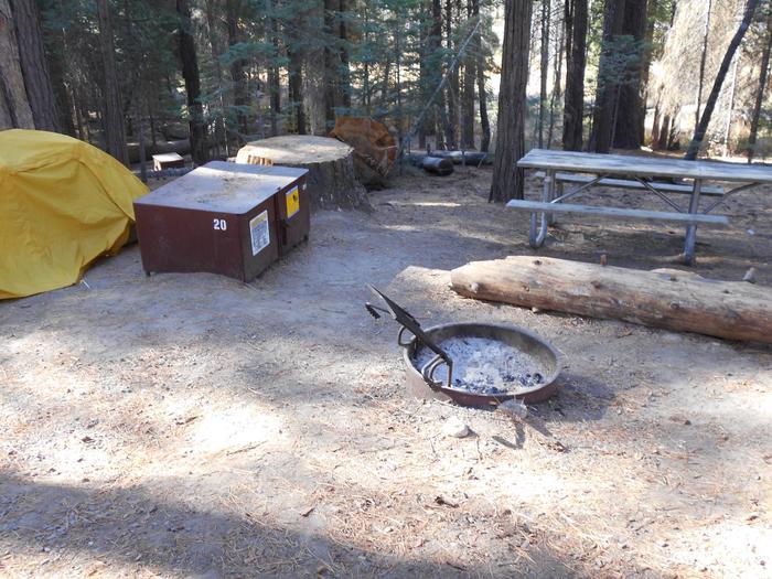 Hodgdon Meadow CampgroundSite 020