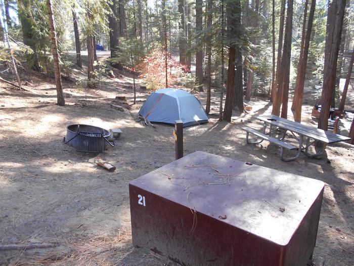 Hodgdon Meadow CampgroundSite 021
