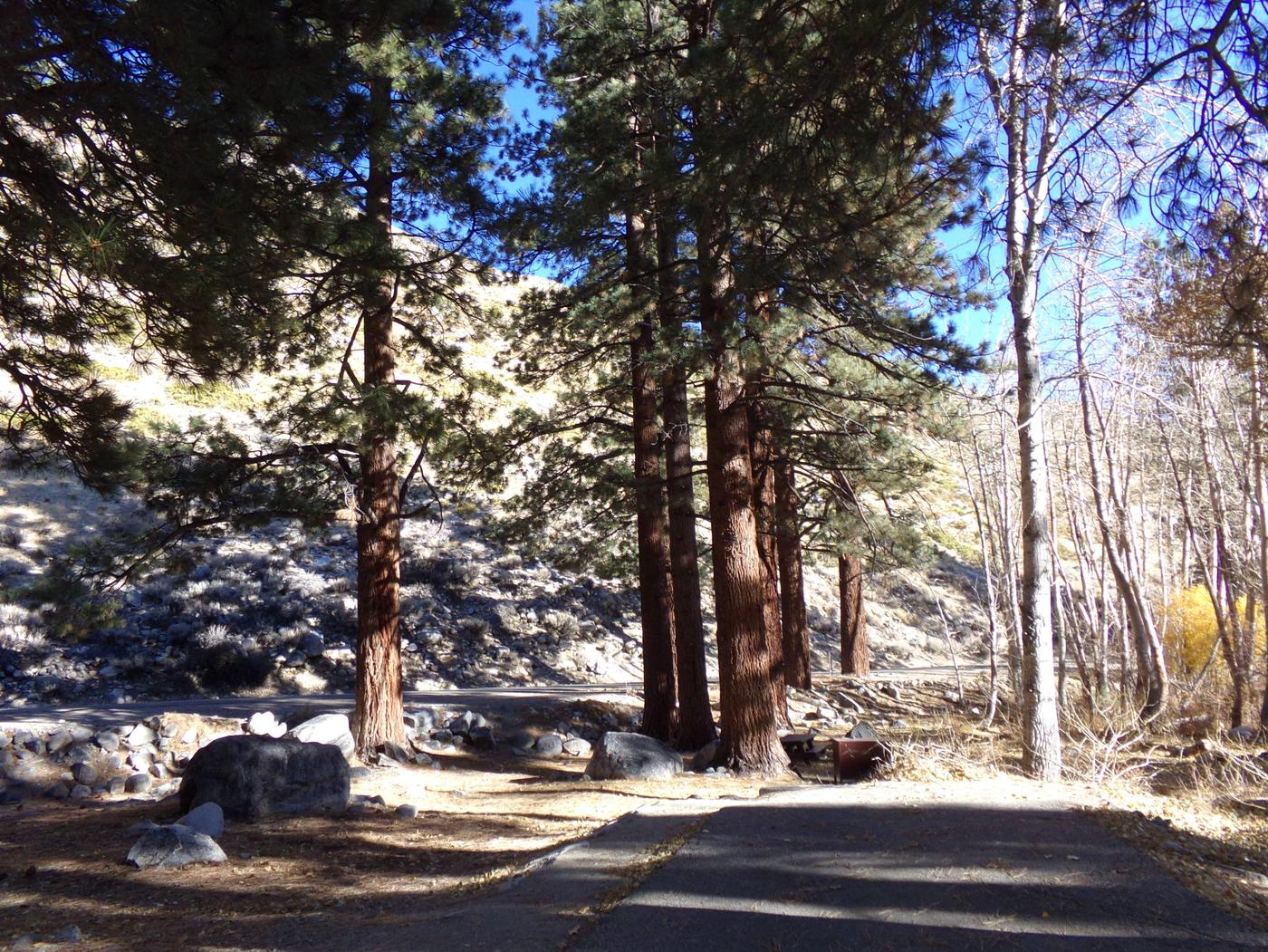 Upper Sage Flat Campground site #20 camping space among the tall pines and mountain views.