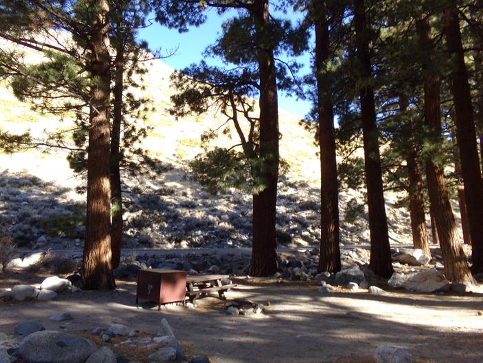 Upper Sage Flat Campground site #21 camping space among the tall pines and mountain views.