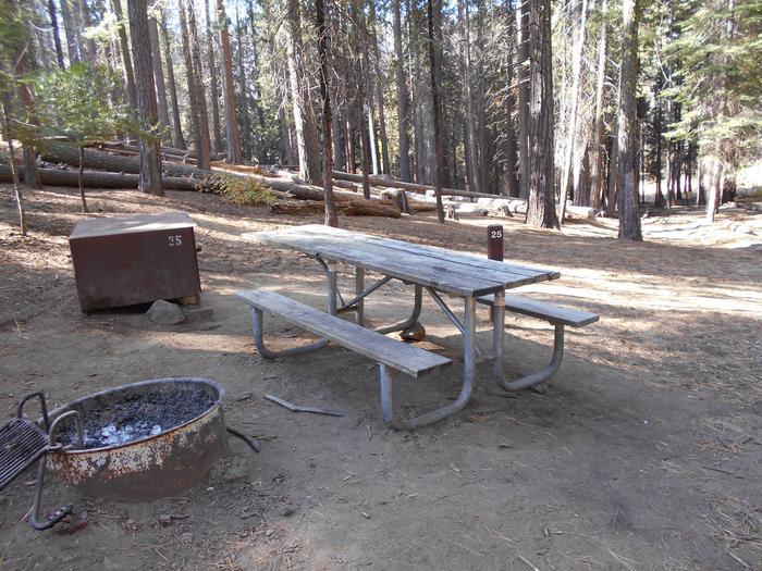 Hodgdon Meadow CampgroundSite 025