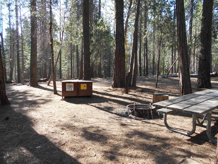 Hodgdon Meadow CampgroundSite 031