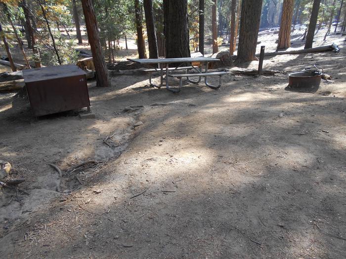 Hodgdon Meadow CampgroundSite 040