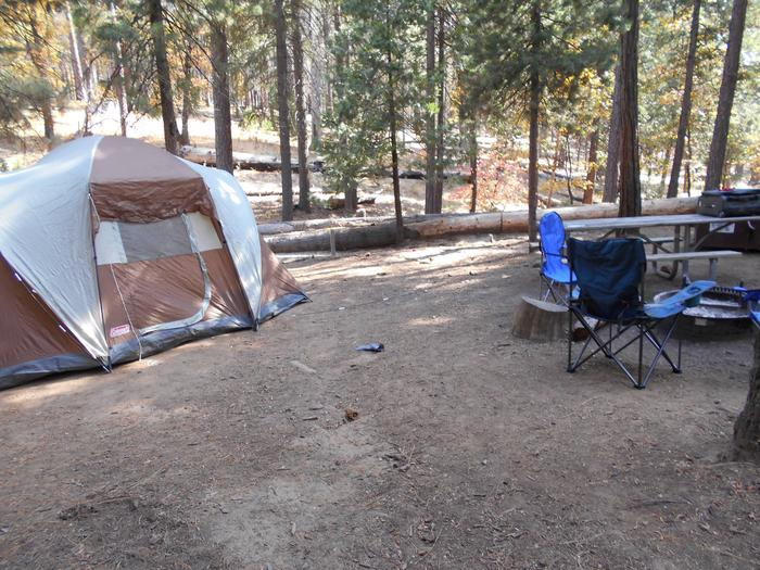 Hodgdon Meadow CampgroundSite 042