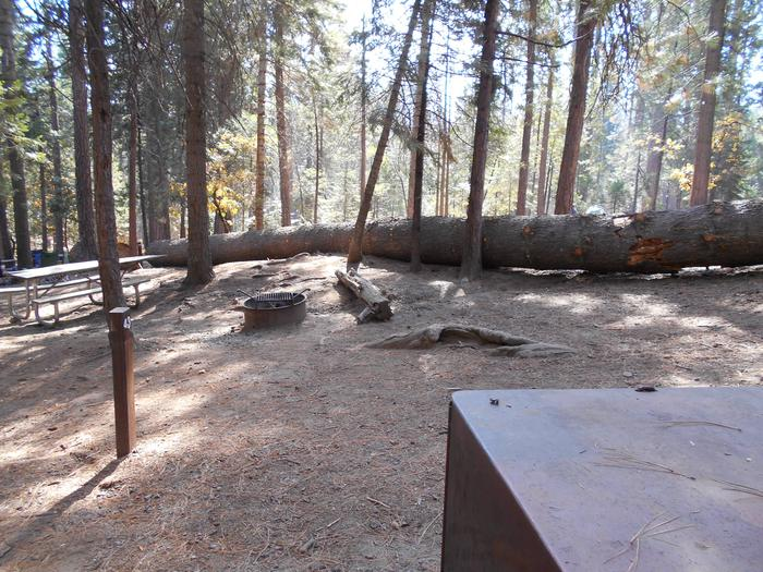 Hodgdon Meadow CampgroundSite 043
