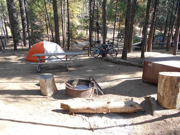 Hodgdon Meadow CampgroundSite 045