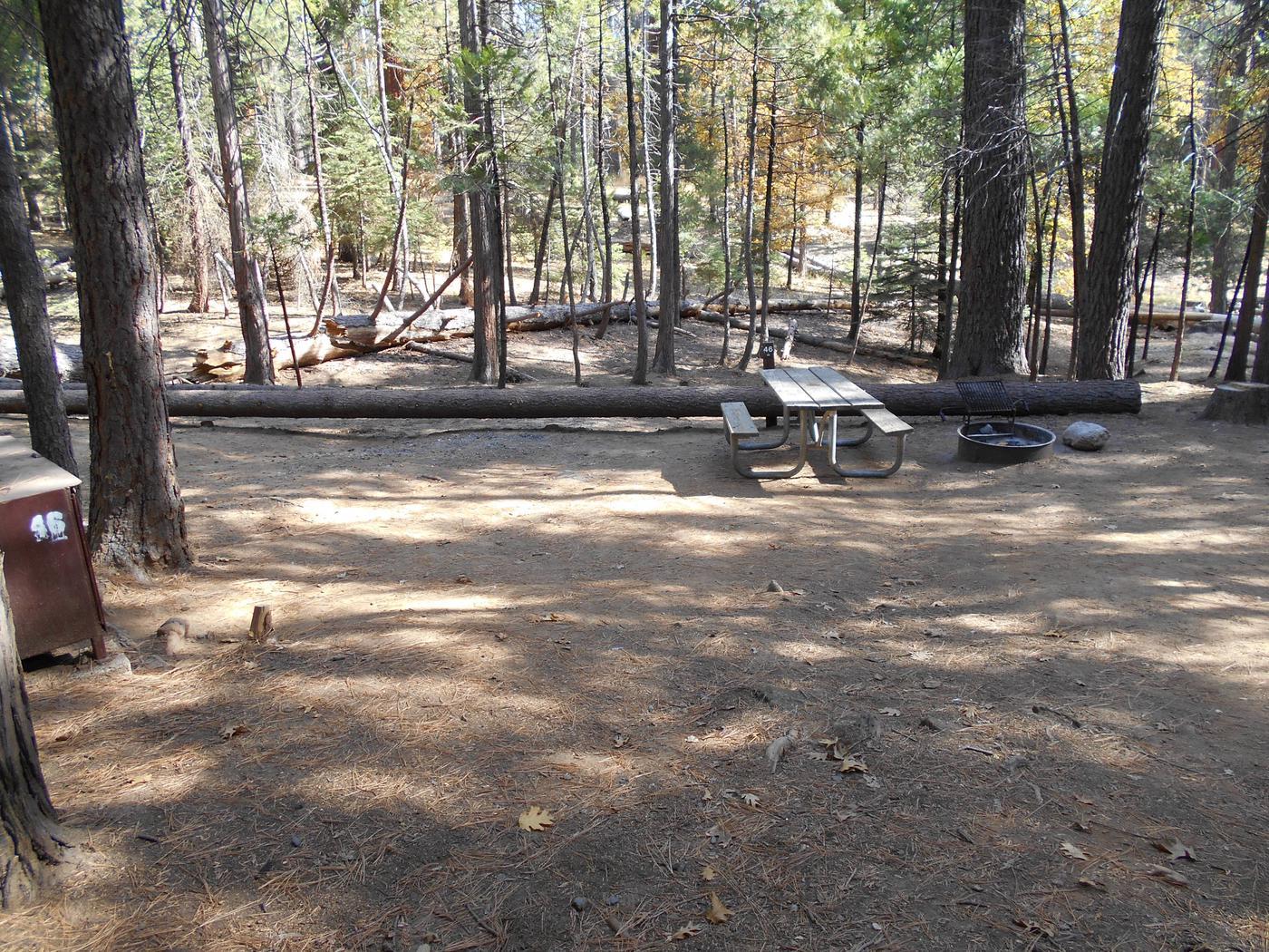 Hodgdon Meadow CampgroundSite 046