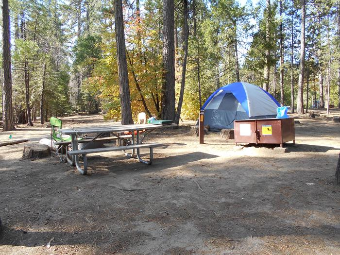 Hodgdon Meadow CampgroundSite 048