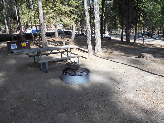 Hodgdon Meadow CampgroundSite 049