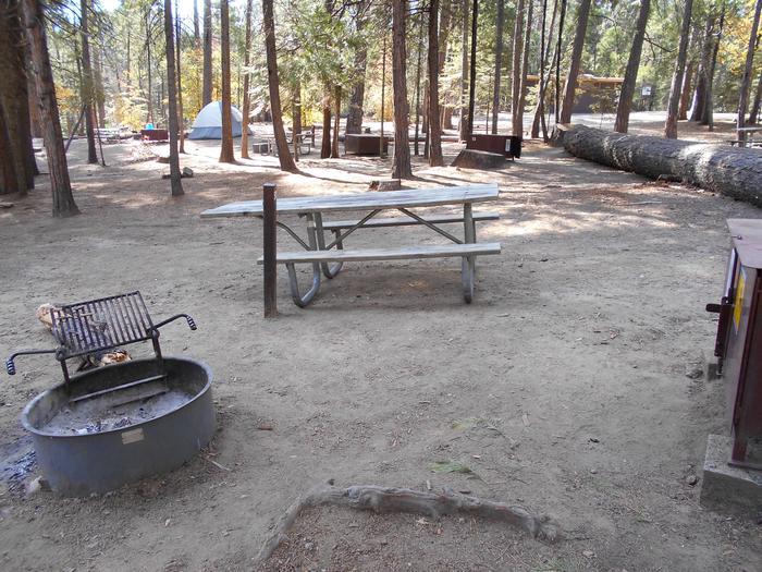 Hodgdon Meadow CampgroundSite 050