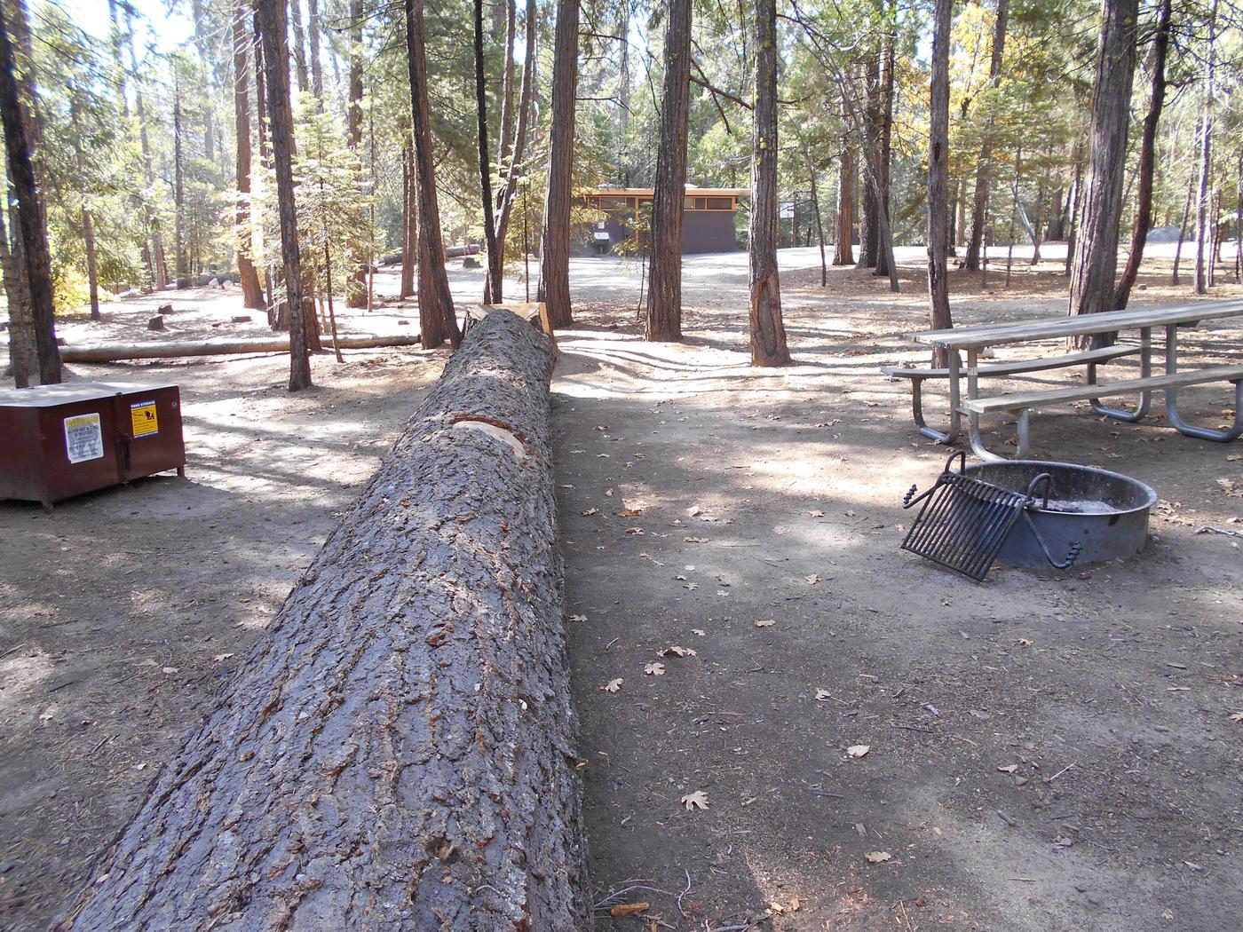 Hodgdon Meadow CampgroundSite 051
