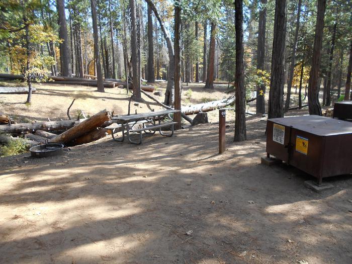 Hodgdon Meadow CampgroundSite 069