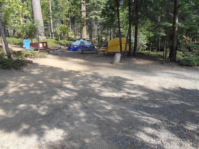 Hodgdon Meadow CampgroundSite 078
