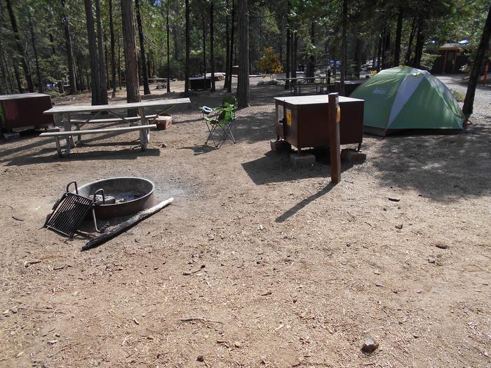 Hodgdon Meadow CampgroundSite 079