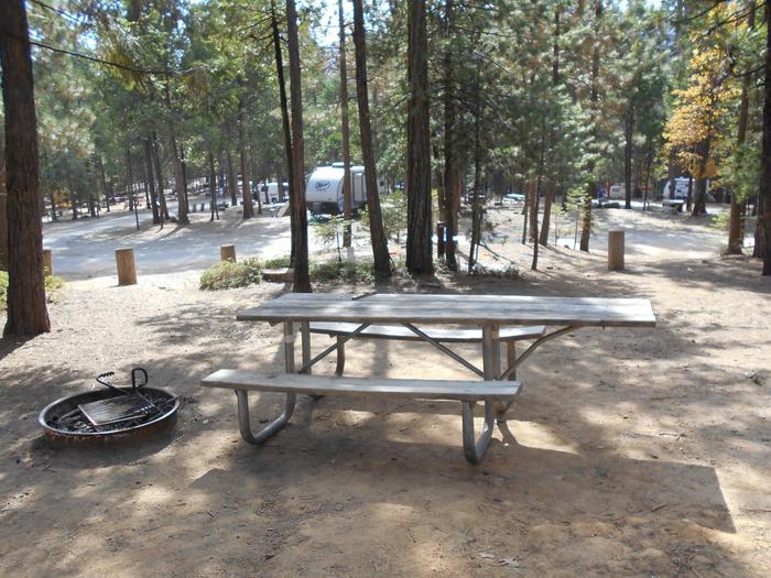 Hodgdon Meadow CampgroundSite 084