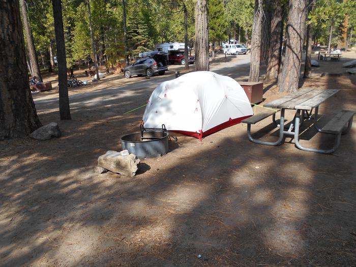 Hodgdon Meadow CampgroundSite 095