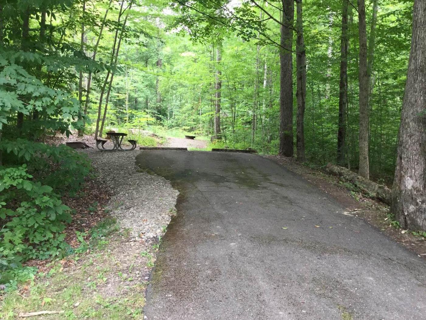 Kiasutha Recreation Area: Site 18
