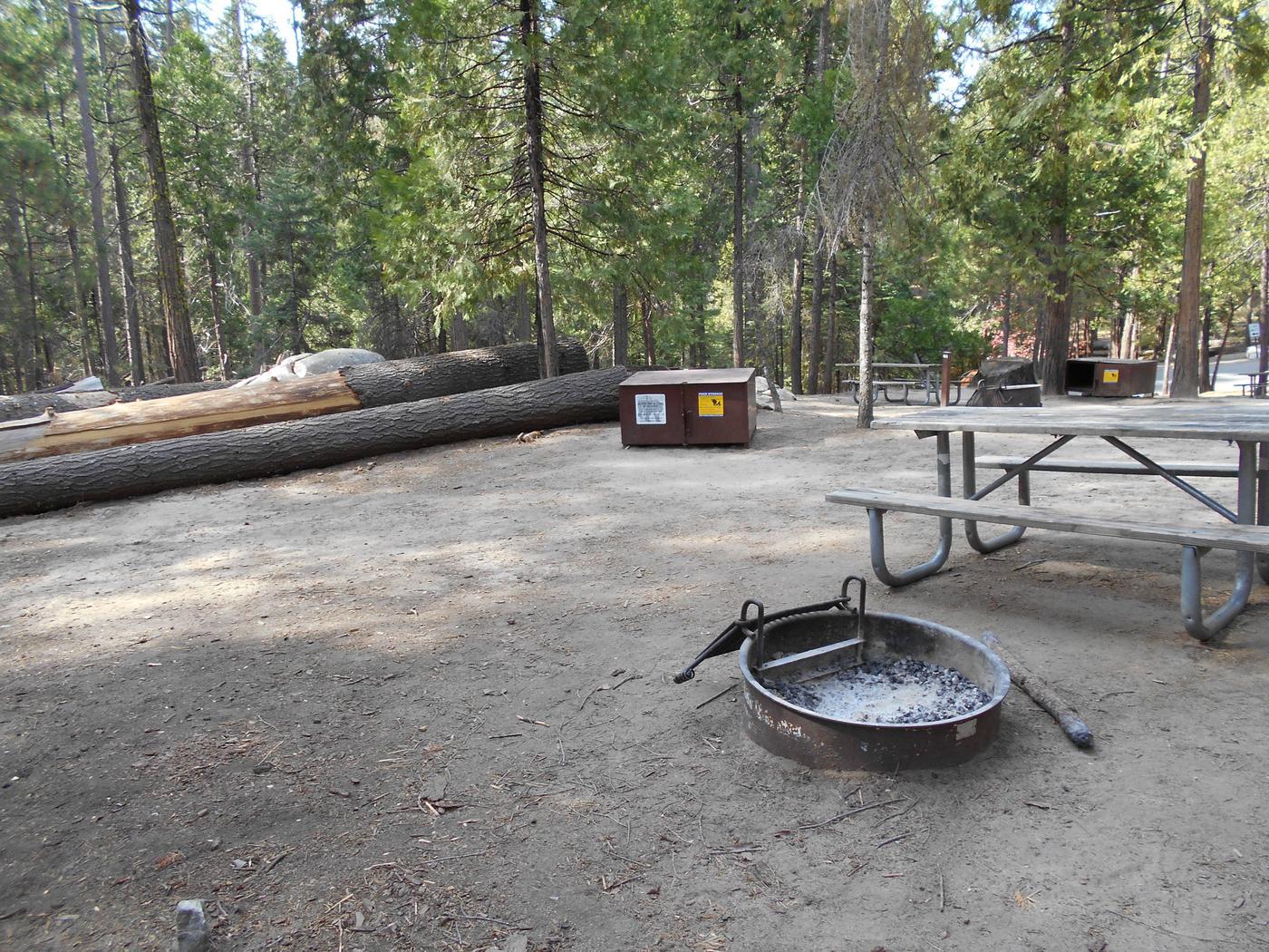 Hodgdon Meadow CampgroundSite 100