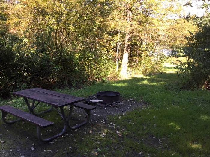 Kiasutha Recreation Area: Site 21