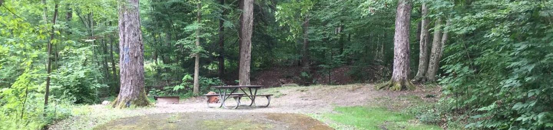 Kiasutha Recreation Area: Site 26